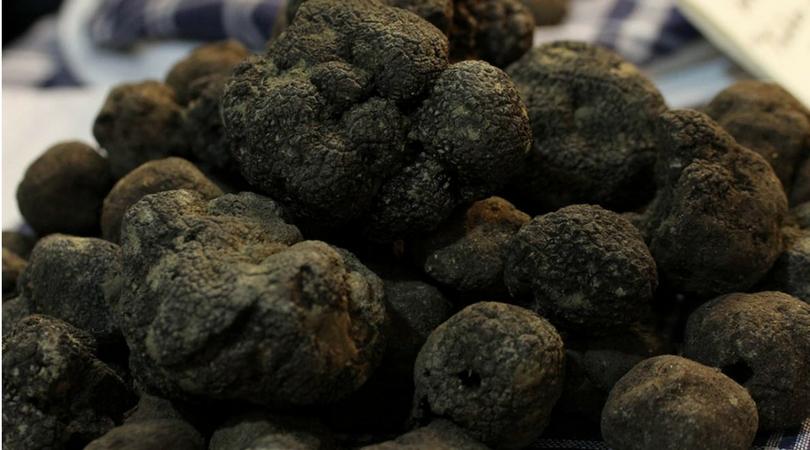 Crollo dei prezzi per i tartufi nero pregiato spagnoli di Cuenca